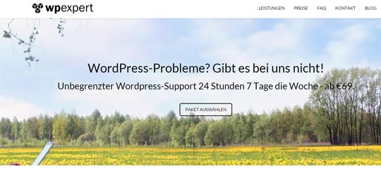 WP Expert: Soforthilfe bei WordPress Problemen