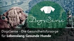 DogsSense Gesundheitsvorsorge für Hunde