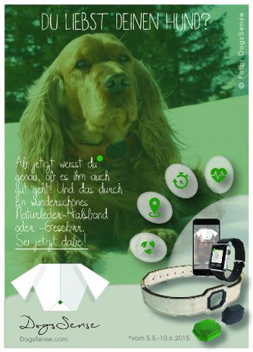 Gesundheitsvorsorge für Hunde