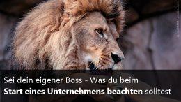 Infografik - eigener Boss sein