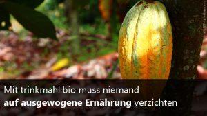 Mahlzeitenpulver mit Kakaogeschmack