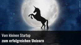 Vom Startup zum Unicorn