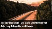 Fuhrparkmanagement Telematik